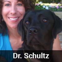 Dr.-Schultz